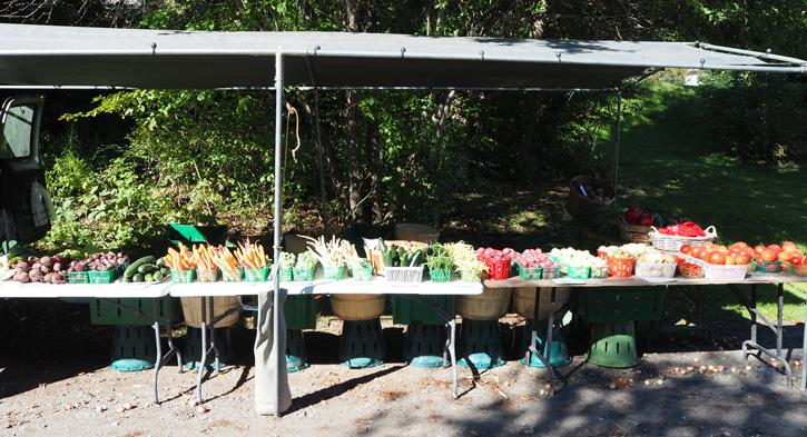 Kinmount Farmers Market