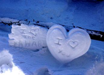 Happy Valentine's Day ~ Kawartha Style!