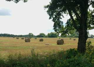 Hay, It's September Already!