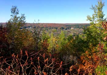 Minden Fall Colours